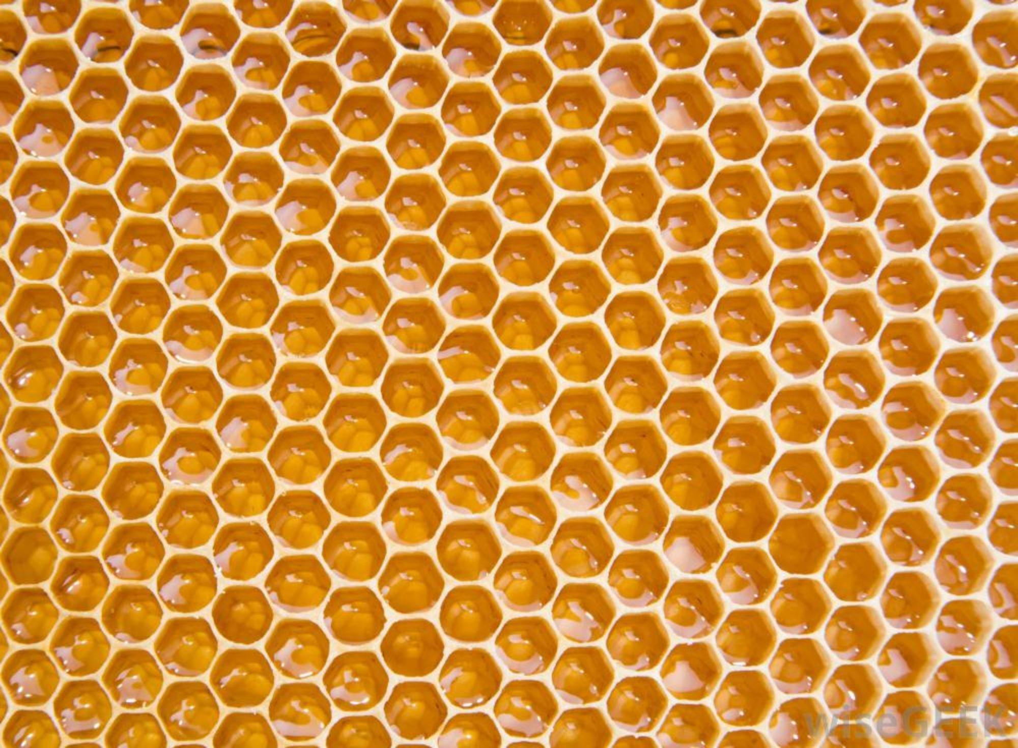 West Virginia Beekeepers Association